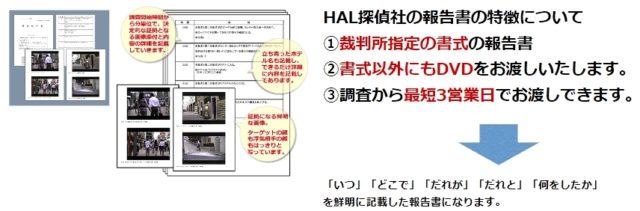HAL探偵社 調査報告書