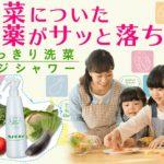 すっきり洗菜ベジシャワーは本当は危険で怪しい?農薬洗浄効果は嘘?