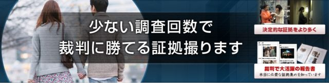 リッツ横浜探偵社 特徴
