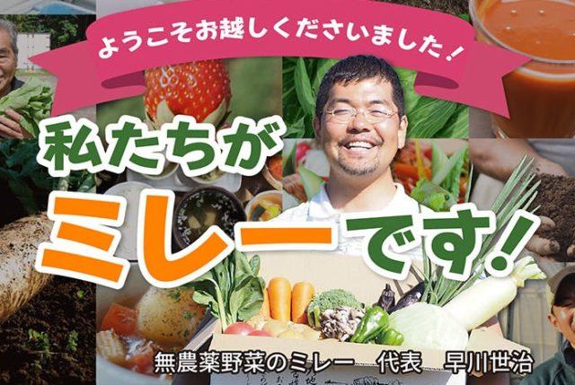 無農薬野菜 ミレー