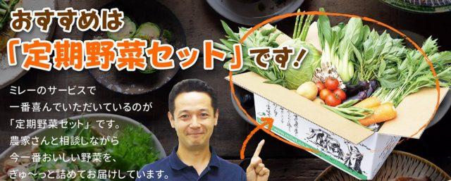 無農薬野菜 定期購入