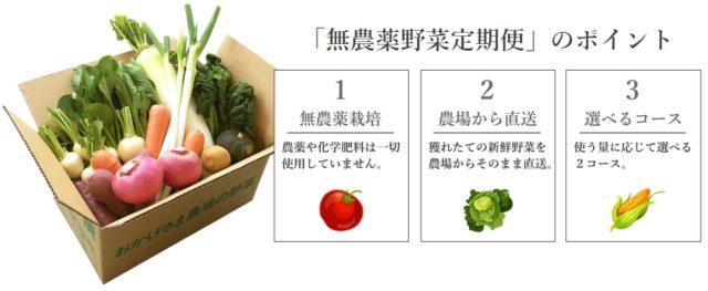 タウンライフマルシェ 産直無農薬野菜定期便 特徴