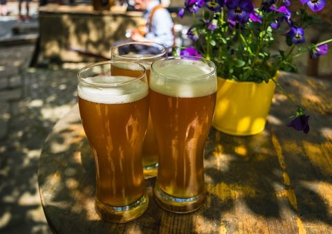 ビール酵母