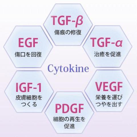 サイトカイン グロースファクター 細胞成長因子