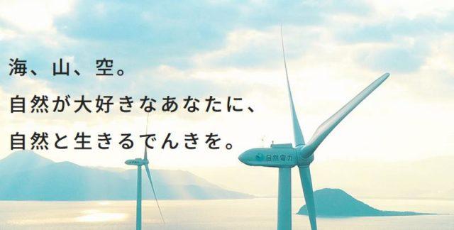自然電力のでんき