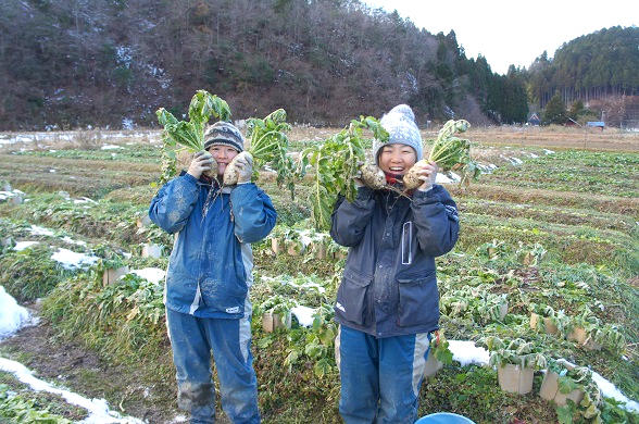 坂ノ途中 野菜