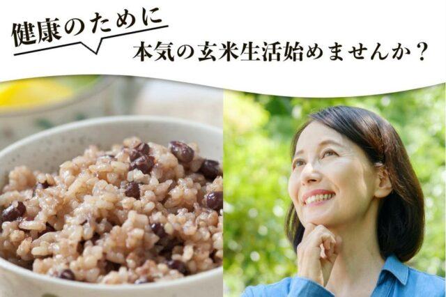 お米のくりや 玄米 発芽酵素玄米