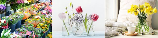 HanaPrime ハナプライム お花の定期便 特徴